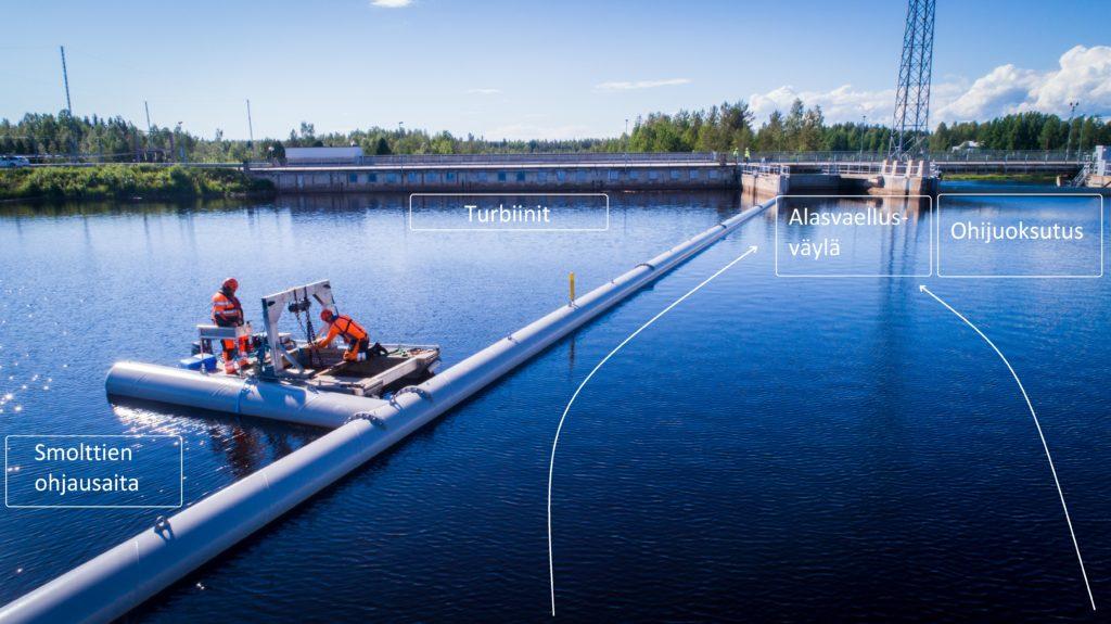 Pohjois-Pohjanmaan liitto. Smolttien alasvaellusväylä rakennetaan turbiinien ja ohijuoksutusluukkujen väliselle alueelle. Nuolet kuvaavat smolttien toivottua kulkureittiä
